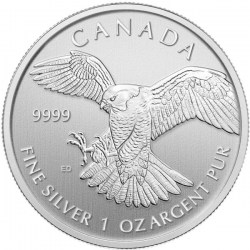 GBD_SilverCoins_1oz_Maple_Leaf_Peregrine_Falcon_Back